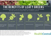 The Health Benefits Of Leafy Greens [Infographic]