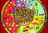An Ideal Paleo Diet Daily Plan [Infographic]